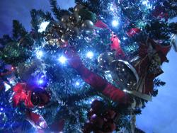 トイザらスのクリスマスツリー口コミ感想・効果